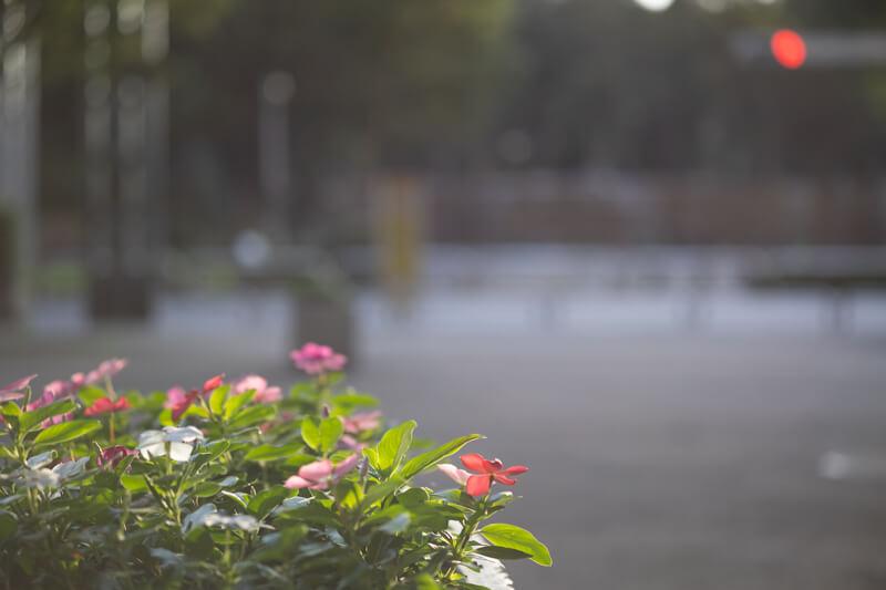 新宿 中央公園